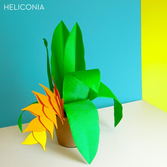 1_Paper_Plants_Product_B_Y_heliconia_labled_1024x1024